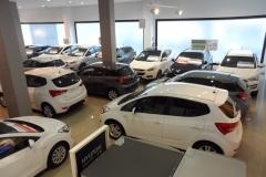 Reportaje-Feria-de-Ocasion-Hyundai-Gibralfaro-Motor