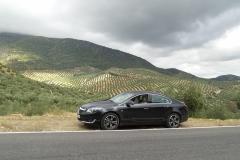 Prueba-Dinamica-Opel-Insignia