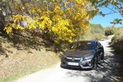 Prueba-Dinamica-Nuevo-Honda-Civic